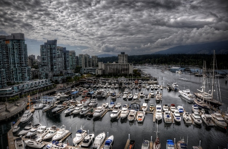 coal harbour copy