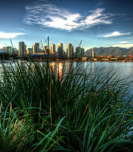grass_city