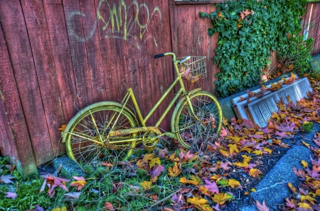 alley_bike